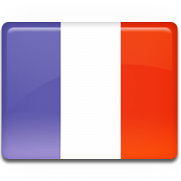 France-Flag-icon